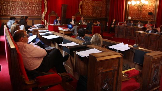 plenari_.jpg