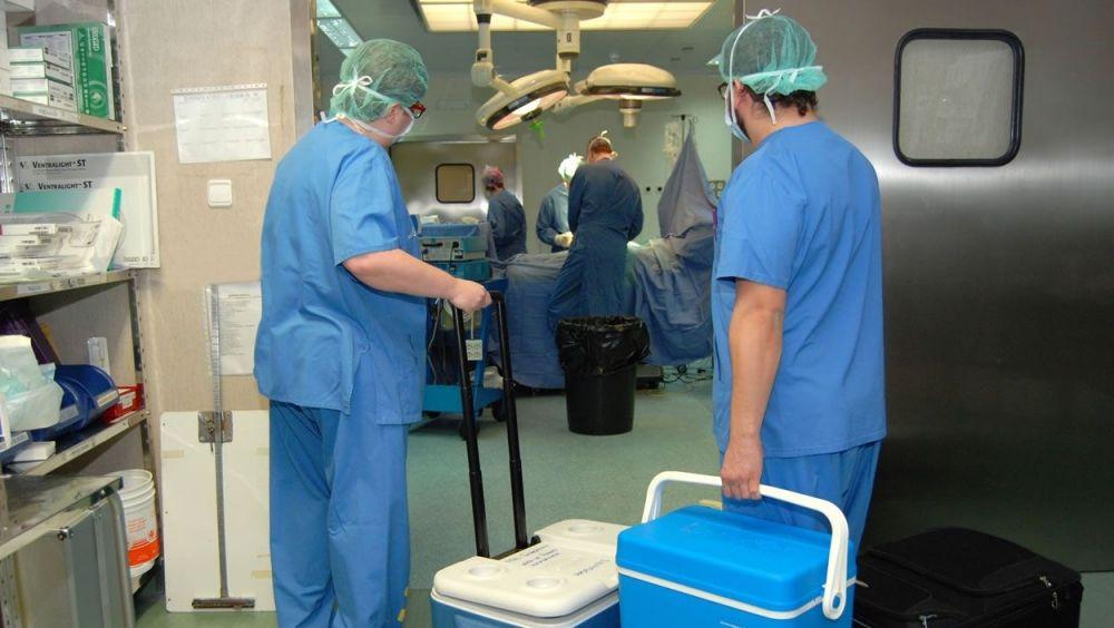 doancion-organos-españa.jpg